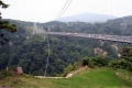 IMG_夢の大吊橋